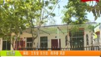 東方:特色改造生態環境 發展花梨種植產業