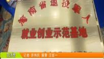 海南省退役軍人就業創業孵化基地授牌