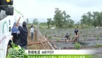 澄邁首個農村糞污無害化 資源化利用示范村揭牌