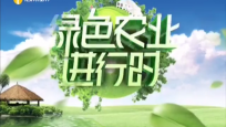 《绿色农业进行时》2020年05月28日
