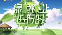 《綠色農業進行時》2020年06月05日