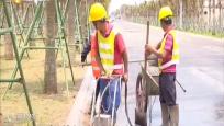 海口:白驹大道东延长线6月底将完工