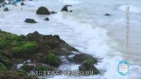 解放海南島戰役—第三集