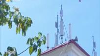 """丰盈村率先覆盖5G信号 村民网络销售进入""""快车道"""""""