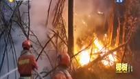 新闻深一点:防火员的防火罪 以身试法究竟为何?