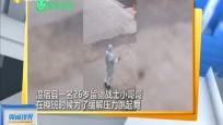 新疆:换班间隙跳舞减压 发现被偷拍害羞跑开