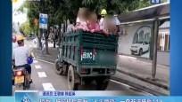 """琼海:拖拉机后车厢""""人头攒动"""" 一查非法搭载14人"""