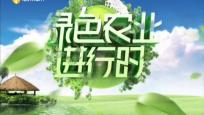 《绿色农业进行时》2020年09月23日