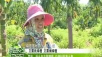 符海:返乡务农圆梦想 引领村民奔小康