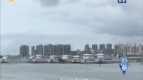 """防御台风""""沙德尔"""":港口码头总动员 海上陆地齐防范"""