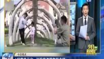 经营多元化 江苏高速服务区走红