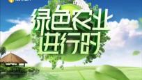 《绿色农业进行时》2020年10月21日