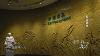 《博物馆里的海洋 五谷飘香》