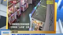 浙江:孩子钻进娃娃机 公共视频记录全程