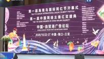 2020中国·海南自贸港广告论坛:共商广告传媒行业发展 助力自贸港建设