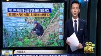 海口凤翔湿地公园非法捕鱼现象频发