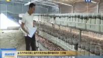 东方:加强科技扶贫 农户企业抱团发展