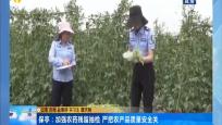 保亭:加强农药残留抽检 严把农产品质量安全关