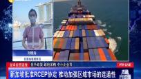 全球自贸连线 新加坡批准RCEP协定 推动加强区域市场的连通性