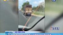 狗被货车拖行引发热议 交警联系车主查证原委