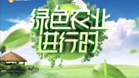 《绿色农业进行时》2021年04月15日