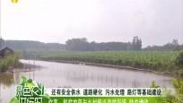 临高:脱贫攻坚与乡村振兴有效衔接 助农增收