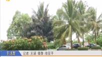 海南气候今年总体较特色 雨急偏早需提前防范