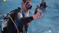 潜水教练王艺锟:让更多游客在海南体验专业潜水的魅力