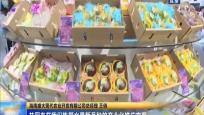 """瓊海:首個國家級專家服務基地落戶""""世界熱帶水果之窗"""""""