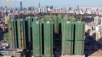"""""""海南省建筑工程质量潜在缺陷保险""""研讨会探讨如何维护业主权益"""
