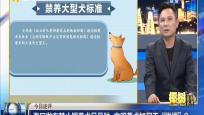 """今日述评:海口发布禁止饲养犬品种 文明养犬如何不""""脱缰""""?"""