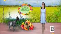科普一分钟 海南热带特色高效农业有哪些?