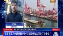 洋浦布局石化新材料產業 引發國外知名石化工企業關注
