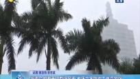 海南今明两天仍有强风雨 地质灾害防御工作需加强