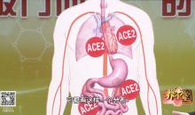 新型冠状病毒防控指引十八讲—— 防护全攻略