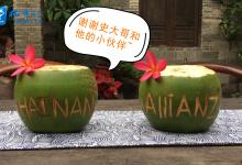 """微视频丨椰子变身""""外交官"""" 田园也能国际范"""