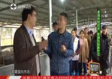 海南省脱贫致富电视夜校第七十四课