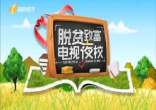 海南省脱贫致富电视夜校第一百三十三课