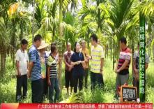 海南省脱贫致富电视夜校第一百四十三课