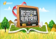 海南省脱贫致富电视夜校第一百四十八课