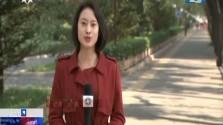 """""""党代表通道""""首次亮相党代会 展现开放自信中国"""