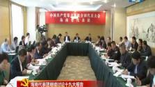 海南代表团继续讨论十九大报告