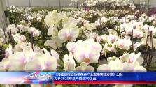 《海南新闻联播》完整版视频2017年12月24日