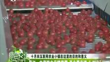 """昌江:电商助力品牌发展 圣女果走进""""e时代"""""""