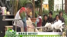 海口:桂林洋国家热带农业公园农产品丰富 欢乐活动多