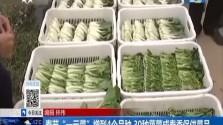 """春节""""一元菜""""增到4个品种 30种蔬菜成春季保供菜品"""