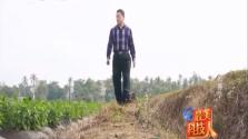 护农科技者 张善学