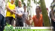 乐东:近百种植户汇聚一堂 探讨槟榔种植技术