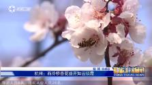 《中国旅游新闻》2018年03月15日