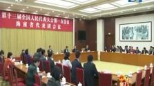 海南代表团举行总结会 刘赐贵主持并讲话 沈晓明出席